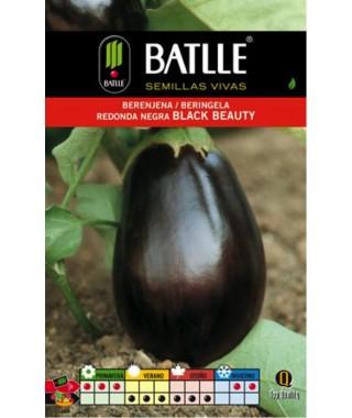 Berenjena Redonda Negra Black Beauty